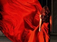 """""""Red is the great clarifier - bright and revealing. I can't imagine becoming bored with red - it would be like becoming bored with the person you love.""""  - Diana Vreeland"""
