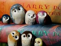 Magic. Owls. Wands.