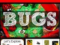 Bug Theme