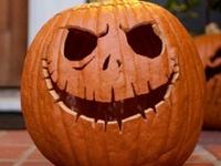 Halloween&Pumpkin's!
