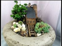 potted bonsai/fairy gardens and mystical outdoor spaces