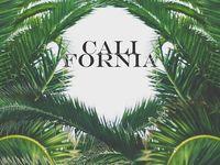 California Dreams ♡ The Beauty