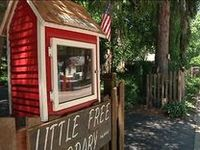 A collection of little free libraries around the world.
