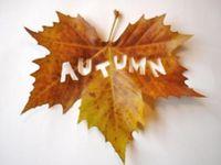 Autumn/Thanksgiving