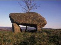 Ancient Ancestors