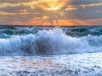 SeaShells, SeaShores, SandCastles & SunSets