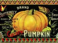 For the Love of Pumpkin