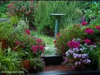Gardening, Landscaping And Urban Farming