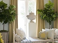 Details of a Decorator!