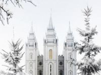 I'm a Mormon. I know it. I live it. I love it. Ask me about my religion!