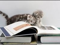 Animals and pets read books too :)