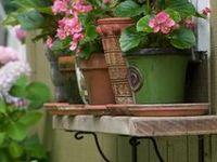 Garden bliss & Patio pleasures