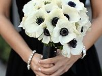 Breakfast at Tiffany's Wedding Inspiration/ Wedding Theme. Black and White wedding colors with Tiffany blue accent colors