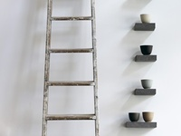 There is an old bamboo ladder at our place in India. It's being used as a ladder right now. But I see ... I see it's future ...