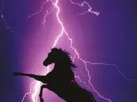 I love lightening storms!