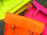 # Neon # Hot Pink # Neon Orange # Neon Green # Neon Yellow # Neon Pink # Neon Colors #Women's #Fashion #Hair #Shoes #Nails #Dresses #Shorts #Belts #Shorts #Skirts #Make-up