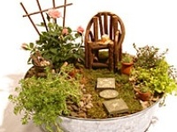 Ideas for miniature gardens, a lot of the ideas come from Two Green Thumbs Miniature Gardening.