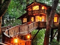 Tree houses and cabins in the woods and forests on the world.