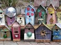 birdhouses, bird, nature, outdoors