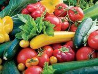 Garden Vegetables & Fruit