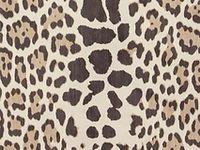 Fabric & Wallpaper