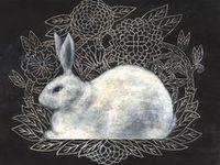 rabbit + hare