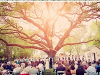 Wedding 8 22 2015 ❤️