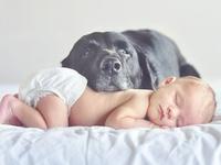 babies, kids, family.