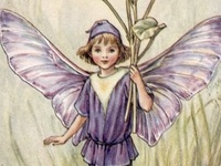 May the wings of the butterfly kiss the sun and find your shoulder to light on, to bring you luck, happiness and riches today, tomorrow and beyond. An Irish Blessing