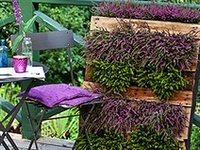 159 best diy tuinieren met pallets diy pallet gardening tips images on pinterest buildings - Outdoor tuinieren ...