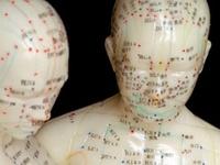 Acupuncture, Anatomy, Health, Herbs