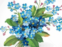 Forget-me-not's