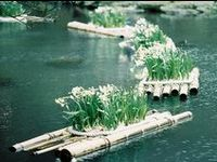 7 Best Images About Floating Gardens On Pinterest 400 x 300