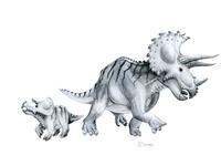 Jurassic Park Velociraptor Skeleton Tattoo 1000+ images about My ...