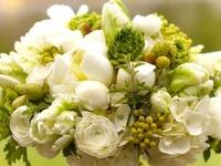 Cakes & Bouquets