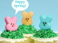 Easter / Spring Cupcakes & Cakes