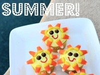 Summer Time Cupcakes / Cakes