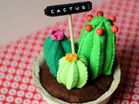 cactus (non-prickly)