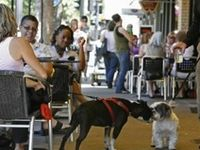 Find Pet Friendly Restaurants & Bars throughout the U.S.  If you know of a Pet Friendly Restaurant or Bar to add to our Resource Directory fill out the form on our website or email us.