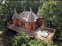 Cabins, Tree Houses, & Cool Dwellings