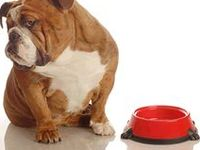 ... ' Raw Dog Food on Pinterest | Raw dog food, Grass fed beef and Diet