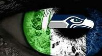 Seattle seahawks / The best team in the NFL. PERIOD.