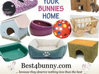 Everything I want for my bunny, Midas, plus some cute buns for extra enjoyment ;)