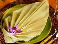 Creative Napkin Folding & Place Settings for Elegant Dining or Simple Get-Togethers...Origami Napkin Folding...