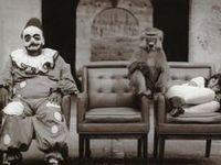 Circus & Harlequin