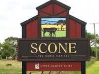 + images about SCONE RECIPES on Pinterest   Scones, Blueberry scones ...