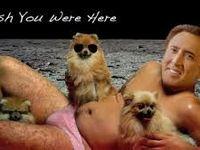 Nicolas Cage is creepy