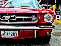 Gorgeous Cars