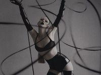 ...L I N E S...binding...netting...caging....