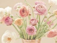 Flowers Holic ⚘